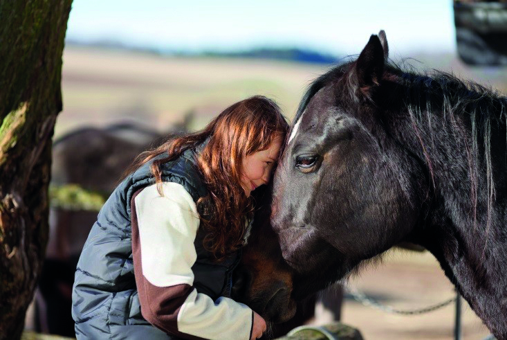 Stock image of a child bonding with a horse, pressing their foreheads together